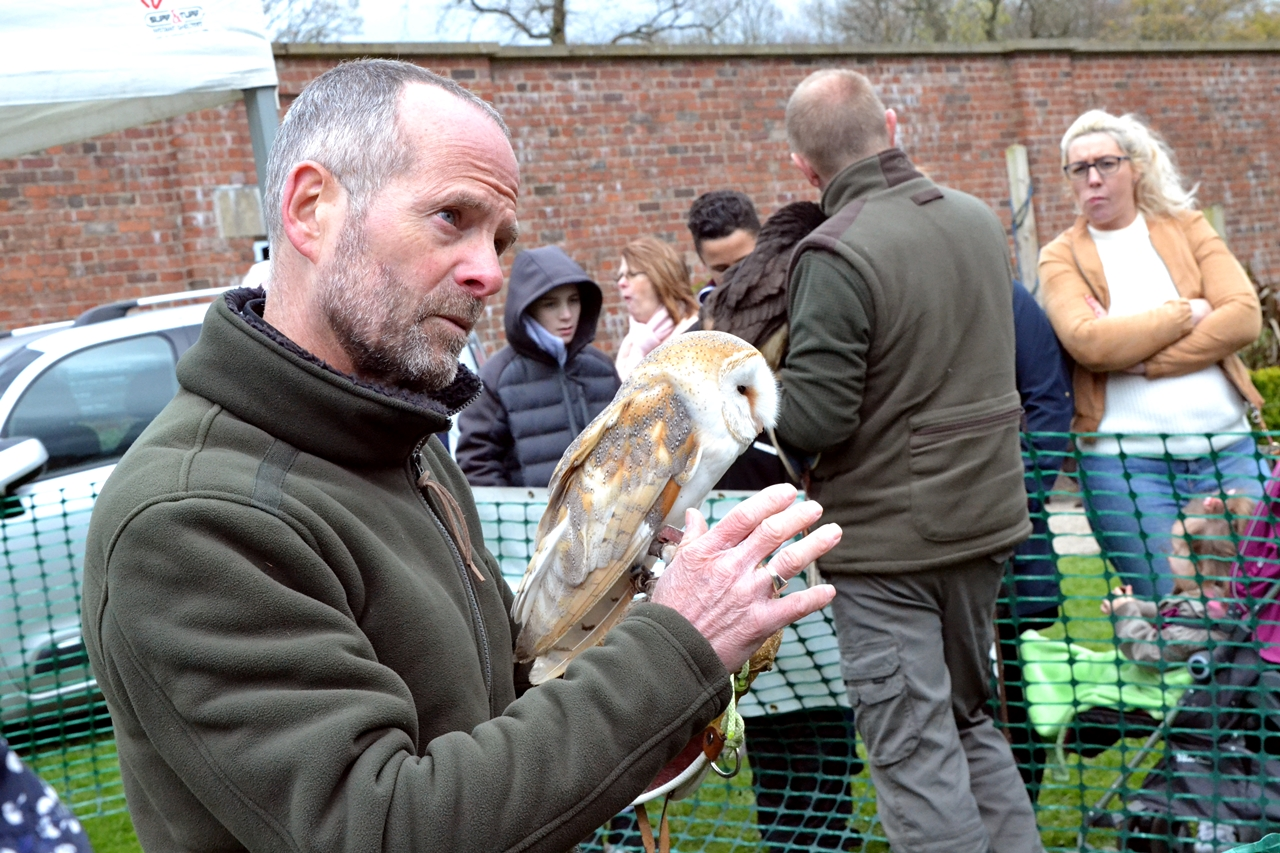 barn owl heaton park fair