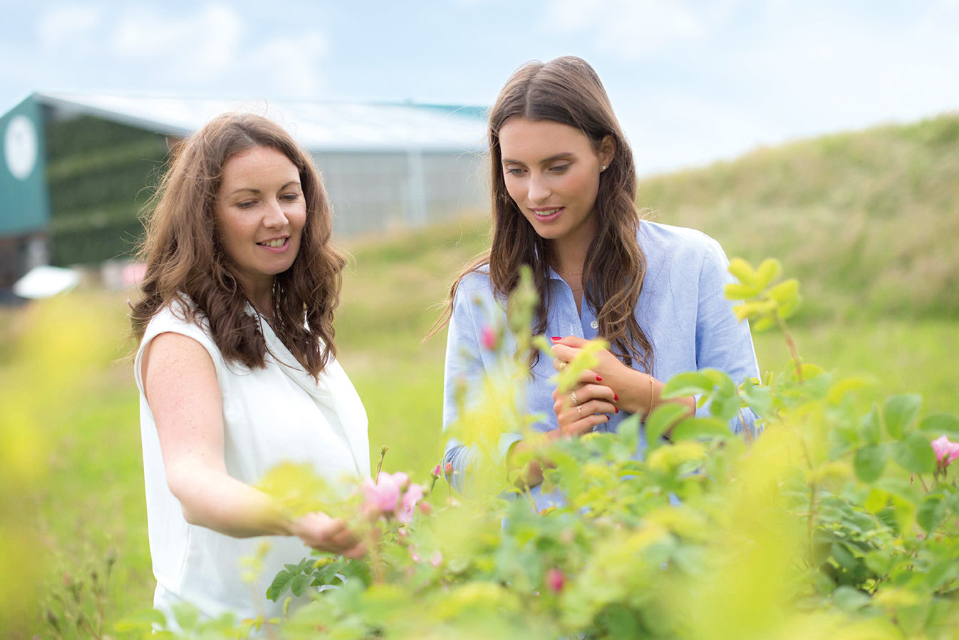deliciously ella launches neals yard remedies skincare