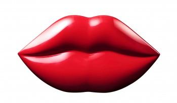 Fling Lip Kit
