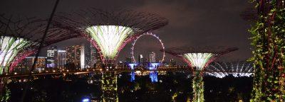 Insider's Travel Guide   Singapore