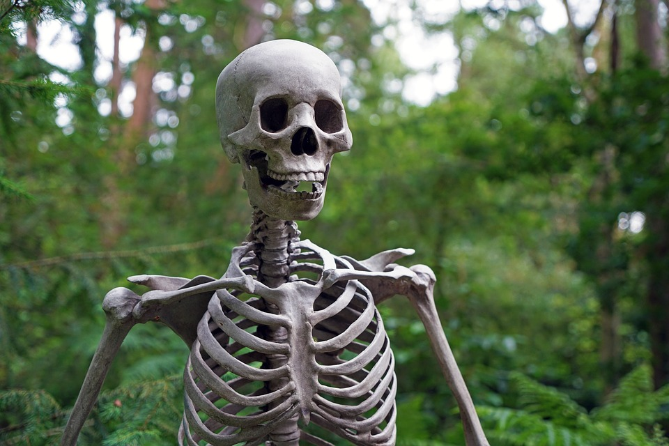 What to do for Halloween in Manchester 2016 skeleton
